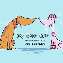 Dog Gone Cute Grooming Hoschton Ga