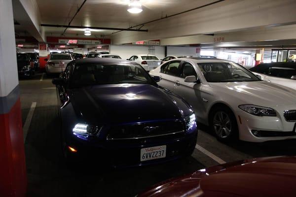 Dollar Rent A Car Ford Escape