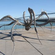 Crouching Spider by Louise Bourgeois - San Francisco, CA, États-Unis. photo by Bill Wilson