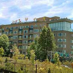 Mercer view apartments south lake union seattle wa yelp for Seattle view apartments