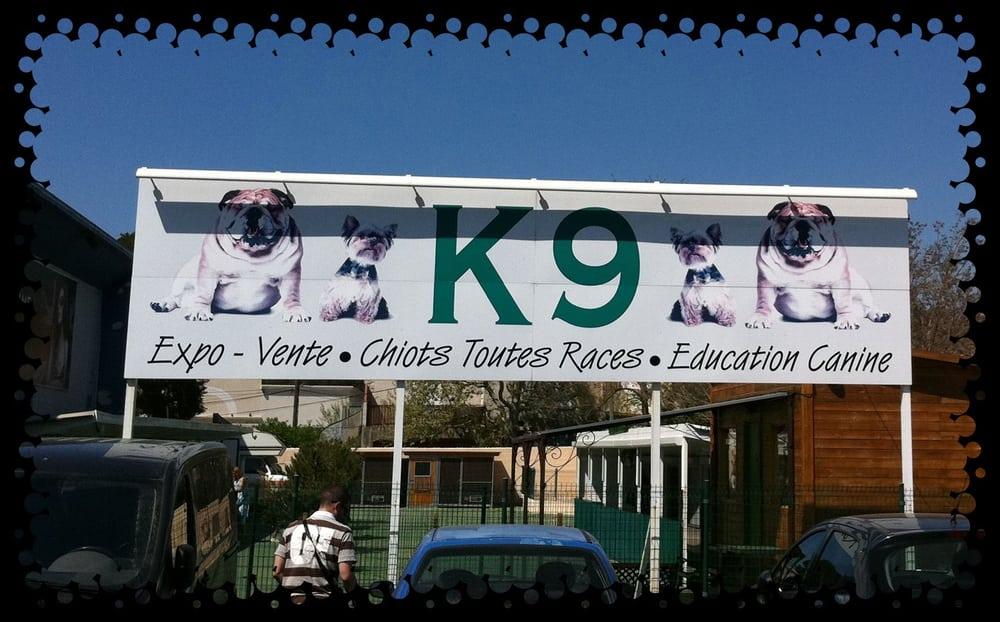k9 expo vente de chiots magasin pour animaux de