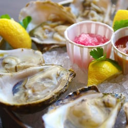Stella 39 s fish caf oysters flown in fresh directly from for Stellas fish cafe