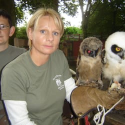 Owl & Bird Of Prey Sanctuary, Preston, Lancashire