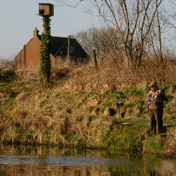 Wansford Trout & Coarse Fishery, Driffield, East Riding of Yorkshire