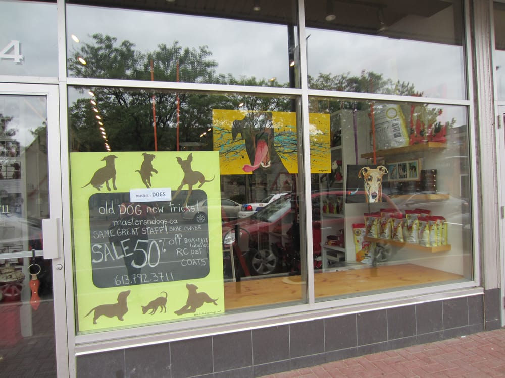 masters n dogs   pet stores   ottawa on   reviews