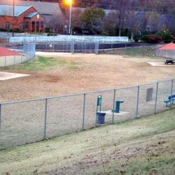 Lewis Dog Park Marietta