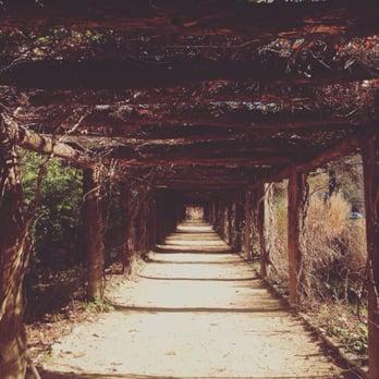 Coker Arboretum 32 Photos Botanical Gardens Chapel Hill Nc Reviews Yelp