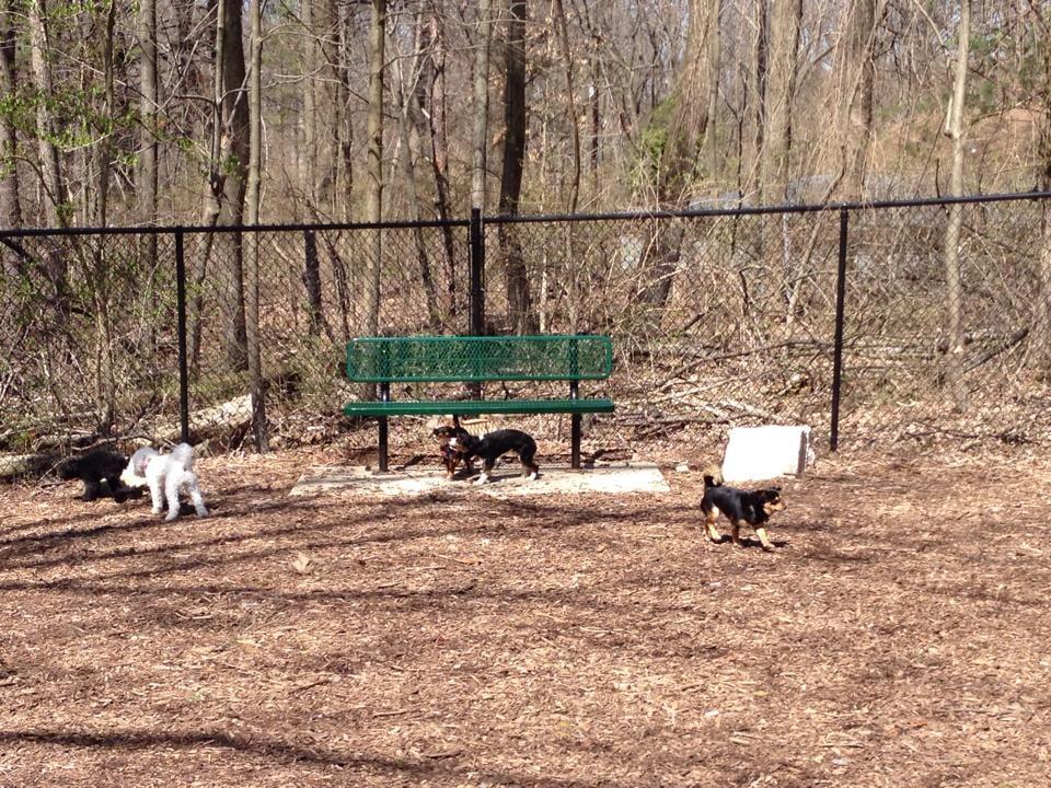 Montgomery County Dog Park