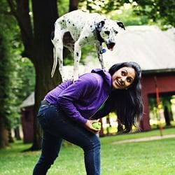 Helena Mt Dog Training
