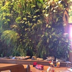 Singer hill cafe 58 foto caff e t oregon city or for Indoor gardening rainier oregon