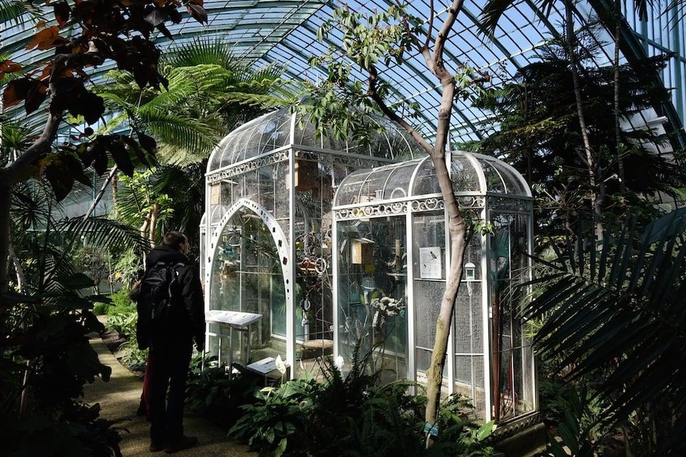 Jardin des serres d auteuil 34 photos jardin botanique for Jardin 16eme