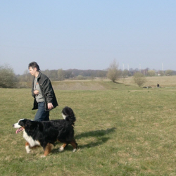 Hundeschule MS, Lünen, Nordrhein-Westfalen