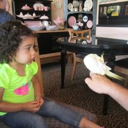 """Victoria's Last Resort - Met resident bird """"Lemonade"""" - Cambria, CA, Vereinigte Staaten"""