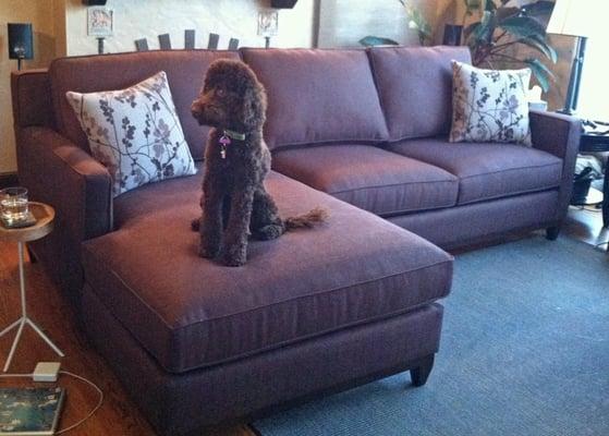 Sofa Outlet Custom Comfort Furniture Stores San Mateo Ca Reviews Photos Yelp