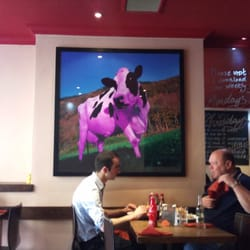 Dinners under a violet cow