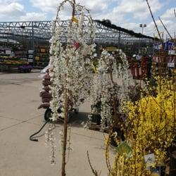 Stein Gardens Gifts Brookfield Wi