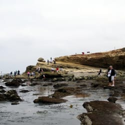 Point loma tide pools beaches san diego ca yelp for Point loma fishing