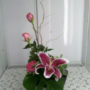 The Gilded Lily - Simplicity of Ikebana with Stargazer lily and pink roses. - Spokane, WA, Vereinigte Staaten