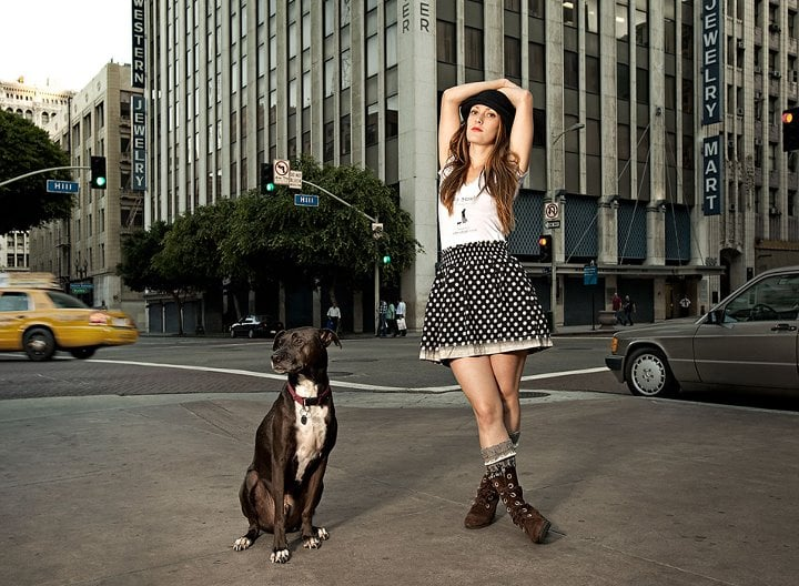 City strut kennels pet sitting downtown los for Dog kennels los angeles