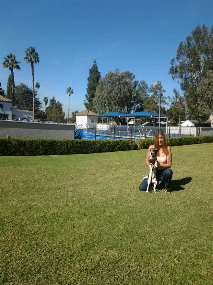 Palm park 30 photos tennis whittier ca reviews yelp - Campsites with swimming pools near me ...