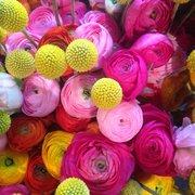 Unsere fröhlichen Blumen...