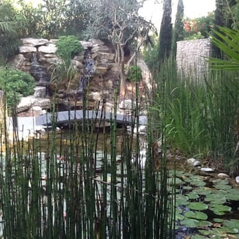 The fishpond in their garden