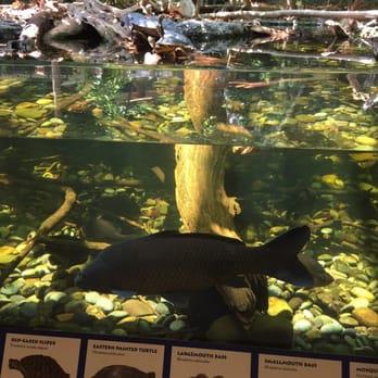 The Virginia Aquarium Marine Science Center 408 Photos