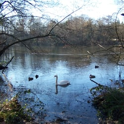 Summerhouse Lake at Bentley Priory…