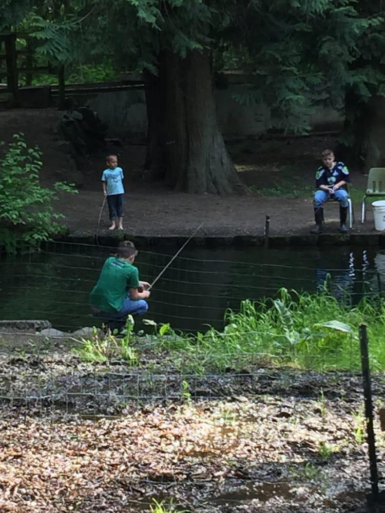 Springbrook trout farm renton wa united states yelp for Trout farm fishing near me