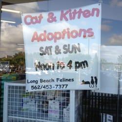 Centinela Pet Supplies Long Beach Ca