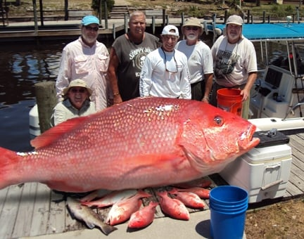 Mexico beach charters boat charters 311 nutmeg st for Jubilee deep sea fishing