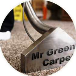 Mr. Green Carpet Care - Carpet Cleaning Service - NYC. -