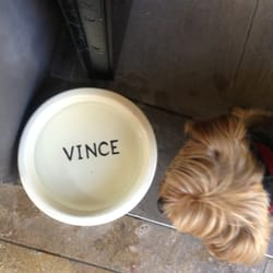 Vince - Women's Clothing - Tulalip, WA - Photos - Yelp