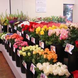 Savon Cash & Carry Florists - Albuquerque, NM, États-Unis. Want a single rose or long stem roses? We have a vast selection!