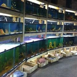 Austin aqua dome 19 photos pet stores 1604 fortview for Fish store austin