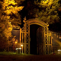 Eingang an der langen Nacht der Musen