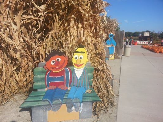 Goebbert S Farm Garden Center Markt South Barrington Il Vereinigte Staaten Yelp