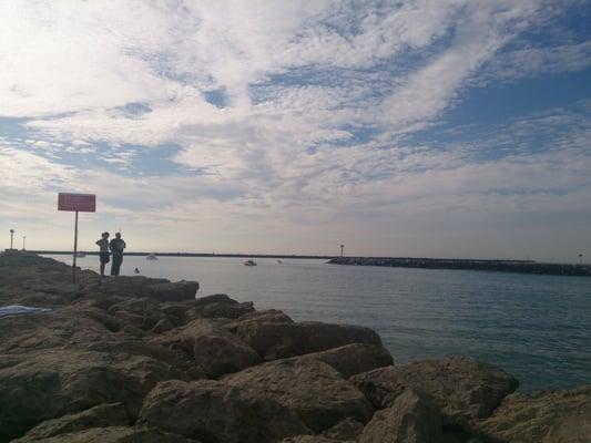 Channel islands sportfishing center 186 photos fishing for Channel islands fishing
