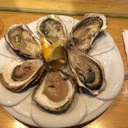Oyster trio: rock oysters from Ireland &…