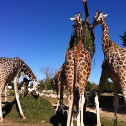 Parco Natura Viva Garda Zoological Park, Bussolengo, Verona