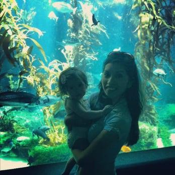 Birch Aquarium La Jolla Shores La Jolla Ca Yelp