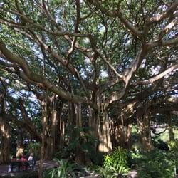 Florida Cypress Gardens Closed Amusement Parks