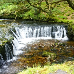 Horseshoe Falls, Waterfalls Walk,…