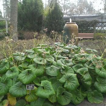 Mercer Arboretum And Botanic Gardens Parks Humble Tx Reviews Photos Yelp