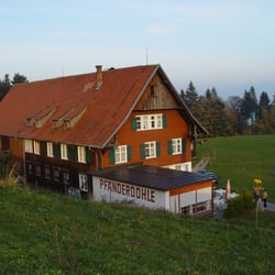 Pfänderdohle, Bregenz, Vorarlberg, Austria