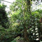 Hohe Halle mit grüner Flora