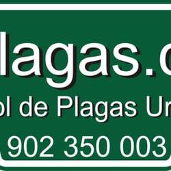 e-plagas.com, Madrid
