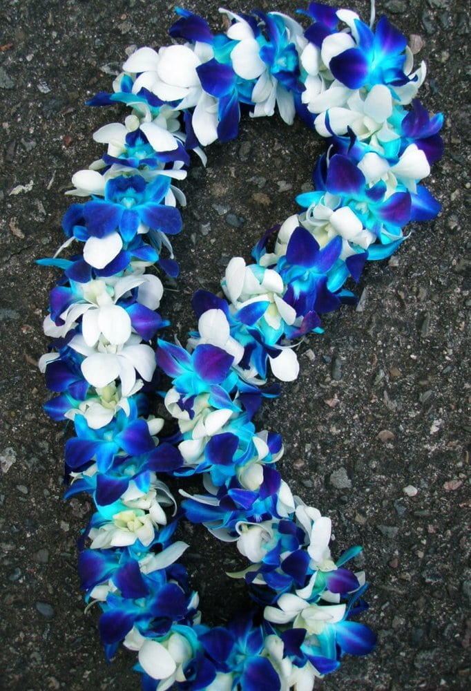 Deluxe Blue Amp White Orchid Lei Yelp