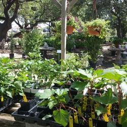 Sunshine Landscape u0026 Garden Center - Nurseries u0026 Gardening - Spicewood TX - Yelp