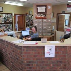 Veterinarian in El Paso, TX | Mesa Veterinary Clinic ...